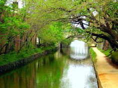 C&O canal in Georgetown. I love serene spaces in urban places