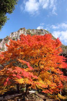 Mifuneyama, Saga, Japan 御船山