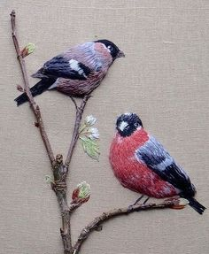 Embroidered Birds.