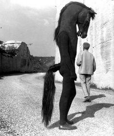 Jean Cocteau with Horse-men on the set of Testament d'Orphée, Les Baux de Provence, Photo by Lucien Clergue Creepy Photos, Strange Photos, Creepy Images, Film Noir Fotografie, Old Photos, Vintage Photos, Pierrot Clown, Jean Cocteau, Centaur