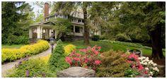 Black Walnut Bed & Breakfast Inn - Asheville, NC luxurious southern hospitality | blackwalnut.com