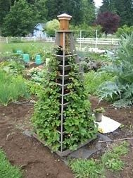 DIY:  Build a Strawberry Tower - takes up a lot less room in the garden  holds 90 - 100 plants.