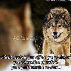 """65 Me gusta, 1 comentarios - Diario de un Lobo (@diariodeunlobo) en Instagram: """"Lo hiciste... #DiarioDeUnLobo #Frase #FrasesEnCastellano #Quotes #SpanishQuote #Like #Follow…"""""""