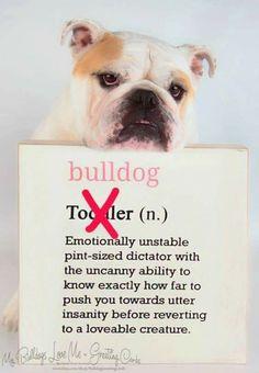 Story Of My Life Toddler And A Bulldog English Bulldog Puppies British Bulldog