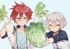 Hotarumaru & Aizen Kunitoshi