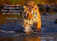 The warrior who trusts his path doesn't need to prove the other is...   Paulo Coelho Picture Quotes   Quoteswave