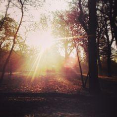 .@Melanie | #abcfee D wie daylight