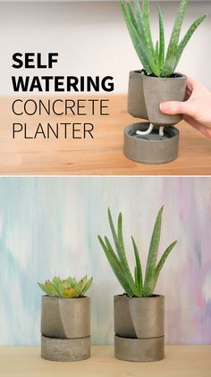 We can't keep plants alive. So today we're making a DIY concrete self-watering planter in the hopes that the plants will take care of themselves haha.