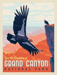 Narrows Zion National Park, Carlsbad Caverns National Park, Crater Lake National Park, Mount Rainier National Park, Joshua Tree National Park, Grand Canyon National Park, American National Parks, National Parks Map, National Park Posters