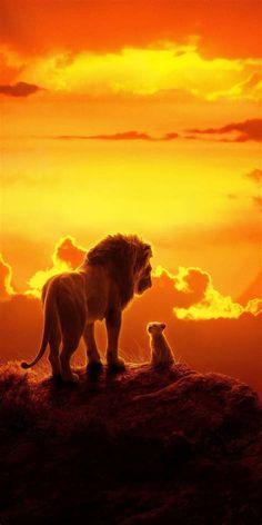The lion king, lion and cub, 2019 film, 1080 × 2160 wallpaper lion . - Disney The lion king, lion Lion King Movie, Lion King Art, The Lion King, Disney Lion King, Lion King Simba, Art Roi Lion, Lion Art, Tier Wallpaper, Animal Wallpaper