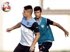 BotafogoDePrimeira: Sem dupla de criação, Ricardo Gomes terá de mexer ...