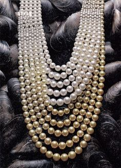 Treasure of the Sea    The Golden Illusion necklace was featured in Intelligent Life magazine with striking black mussel shells as a background. MIKIMOTO
