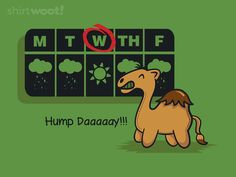 What day is it?!!!