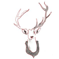 Taxidermy - red-ink and pencil detail illustrations of antique mounted animal heads. Prints available at my Etsy shop!!