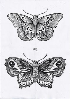 Dotwork - New Site Future Tattoos, New Tattoos, Small Tattoos, Butterfly Coloring Page, Butterfly Drawing, Sternum Tattoo, Mandala Tattoo, Kunst Tattoos, Tattoo Drawings