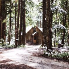 This looks so magical! A cabin set back in the woods, perfect! Forest Cabin, Forest House, Tiny House Big Living, Seattle, Log Cabin Homes, Log Cabins, Water House, Little Cabin, Cabins And Cottages