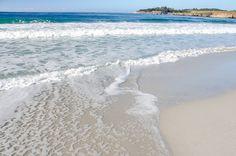 Carmel-by-the-Sea: The Best Dog Friendly Beach in California | http://www.everintransit.com/best-dog-friendly-beaches-in-california-carmel-by-the-sea/