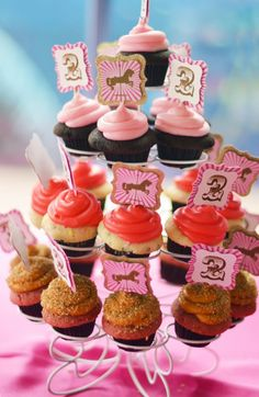 carousel birthday, gorgeous cupcakes and toppers