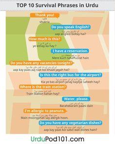 Top 10 survival phrases in Urdu