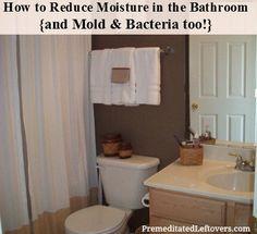 Mold In Bathroom On Pinterest Mold Damp