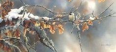 "Susan Bourdet  ""November Light"" -  Chickadee"