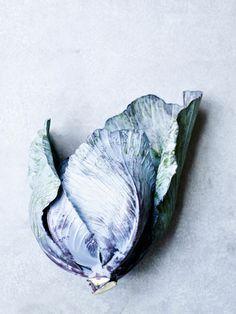 Tara Fisher · beautiful food photography