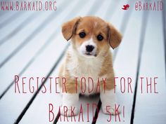 The #BarkAID 5K is happening March 30th! Register this week to secure your T-shirt!