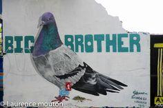 tags, street art, Barcelona, Conse.eu, pigeon