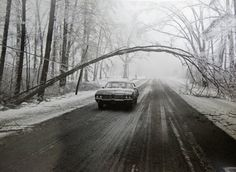 See devastation from Michigan's great ice storm from 40 years ago ...