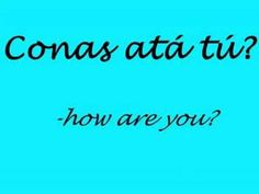 just a small few phrases to begin your irish, lesson 2 is on the way so watch this space. Irish Language, Language Study, Irish Celtic, Gaelic Irish, Gaelic Words, Celtic Music, Irish Quotes, Irish Eyes, Northern Ireland