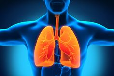Written by: Angelique Johnson Feeling under the weather? Having trouble getting that pesky mucus out of your lungs? Cough keeping you up at night? Don't reach for toxic cough medicine and nasal sprays – turn to nature instead! According to the World Health Organization, respiratory tract diseases are diseases that affect the air passages of [...]