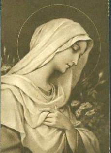 """There is a prayer that starts with """"Hail Mary"""" offered here:  http://www.prayerflowers.com/BlessedMary.htm"""