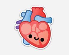 Heart Vinyl Sticker Heart Laptop Sticker Anatomy Sticker Biology Sticker Cute Sticker Science S Nurses Week Quotes, Tumblr Png, Biology Art, Cute Laptop Stickers, Tumblr Stickers, Kawaii Drawings, Aesthetic Stickers, Printable Stickers, Cute Wallpapers