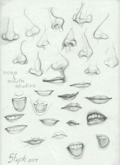 Labios y nariz