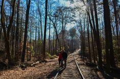 Cherokee Trail At Stone Mountain Park  Georgia #hiking #Georgia #Parks #Kids #Stonemountain www.hikeitfoward.com