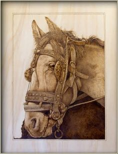 "Whimsical Wood: A little Further Progress with ""Horse"" Pyrography"