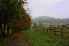 Autumn's Misty Rain. Taken on a late drizzly Autumn day in October along the never ending farm communities of in the Appalachian Mountains of Virginia. Taken by photographer, L. Costello Hinchey.