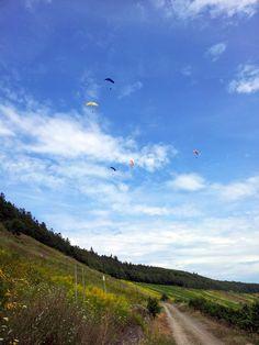 Paragliding along a former river loop at Maring-Noviand, Rhineland-Palatinate, Germany