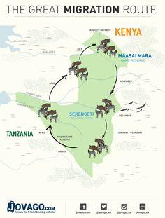 Great Wildebeest Migration Route - Masai Mara - Serengeti #Migration #Kenya #Tanzania