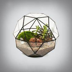 Lovely, tiny living worlds: 18 amazing terrarium ideas