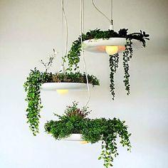 Plafond Lichten & hangers - LED - Hedendaags / Traditioneel /Klassiek / Rustiek/landelijk / Vintage -Woonkamer / Slaapkamer / Eetkamer / 2016 – €39.19