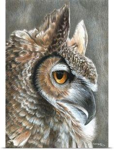 Pencil Drawing Tutorials Owl Art print by Carla Kurt bird 11 x 14 - Owl Art, Bird Art, Drawing Faces, Art Drawings, Pencil Drawings Of Animals, Coloured Pencil Drawings, Drawing Animals, Pencil Drawing Tutorials, Drawing Tips