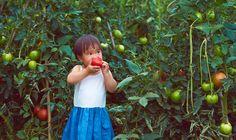 How To Get Your Kids To Eat Vegetables - mindbodygreen.com
