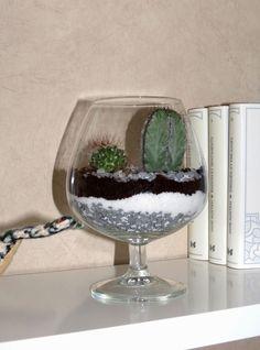 RECREATIONS: Terrarium sec ou mon mini jardin d'intérieur...