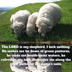 Best Bible Verses, Lord Is My Shepherd, Psalm 23, Be True To Yourself, Cool Words, Lush, Let It Be