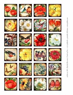 819. Birds and Blossoms 1.5 inch square – piddix instant collage sheets