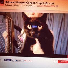 "@Deborah Henson-Conant Deborah Henson-Conant displays her cat Cosita before playing the song ""Cosita Latina"".  http://hipharp.com"