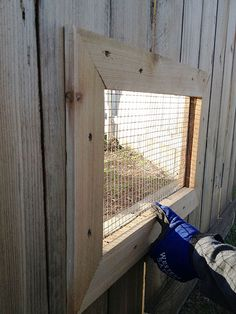 Window in fence for dogs. Ours would probably break out through it somehow.