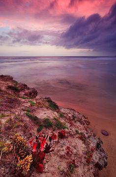 The Ocean's natural garden - Sedgefield, South Africa. BelAfrique your personal travel planner - www.BelAfrique.com