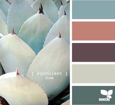 succulent hue
